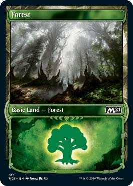 Magic: The Gathering - Forest (313) - Showcase - Core Set 2021