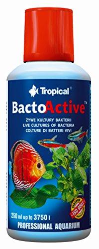 Tropical bacto Attiva Manutenzione per Aquariophilie 250ml