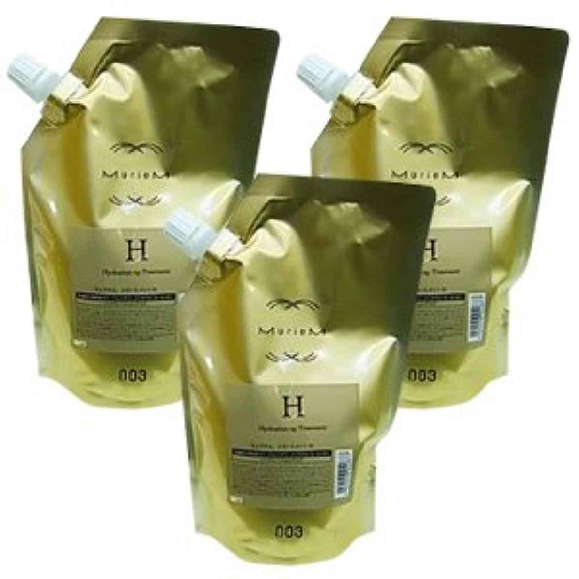 複数服用語集【X3個セット】 ナンバースリー ミュリアム ゴールド トリートメント H 500g 詰替え用