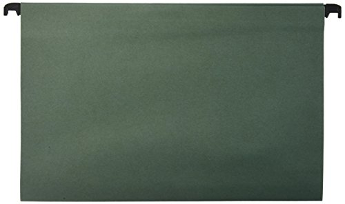 Carpetas colgantes tamaño folio 10 unidades