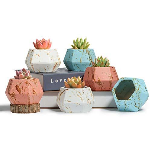 T4U Keramik-Sukkulentententopf, Sechseckig, Bunt, 6 Stück, Geometrische Kleine Blumenpflanze, Pflanzgefäß mit Drainage, Kaktus, Bonsai, Kräuterbehälter für Innendekoration