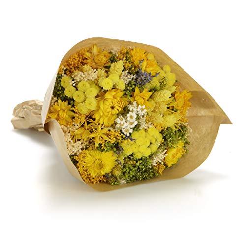 Bouquet-Fantasy- Sanremo flores secas de la Riviera dei Fiori Italia (Rosa)