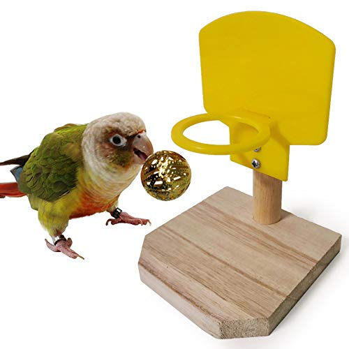 Dyyicun12 Vogel Papegaai Kauwspeelgoed, Huisdier Vogel Papegaai Grappige Basketbal Hoop Ballen Puzzel Game Kauwen Speelgoed Gift, Willekeurige kleur
