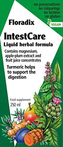 Salus Darm-Care Kräuter-Tonikum plus – zur Erhaltung der Darmgesundheit – mit Calcium und Magnesium und Vitamin D3 – vegan – 250 ml