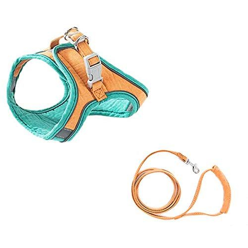 Cat Harness Escape Proof, Kitten and Puppy Universal Harness with Leash Set, Cats Step-in Vest Harness for Walking Adjustable Kitten Collars (L,Green Orange)
