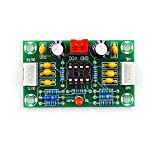 Taidacent XH-A902 2 Channel Mic Preamp Op Amp Module Preamp Power Amp Combo NE5532 Tone Board Preamplifier 5 Times Wide Voltage