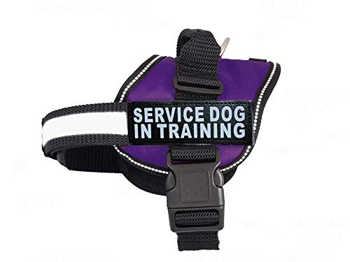 "Doggie Stylz Service Dog in Training Vest with Hook and Loop Straps and Handle – Harness Comes in Sizes XXS to XXL – Three Colors – Dog Harness Features 2 Reflective Patches (Girth 24""-31' Purple)"