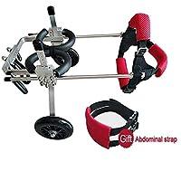 犬用歩行器 車椅子調整犬の車椅子後肢修理2輪犬ベビーカー簡単にリハビリテーション訓練ペットカー 犬用車椅子 (Size : M)