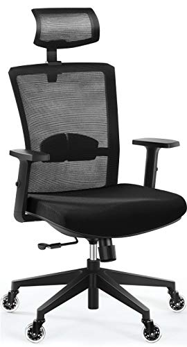 Office Chair, Tribesigns Ergonomic Office Chair with 2D Adjustable Headrest,High Back Desk Chair with Lumbar Support, Skate Style Wheels Casters, Upgraded Thick Seat Cushion for Home Office