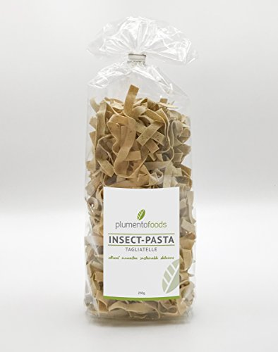 PlumentoFoods INSECT PASTA - Tagliatelle (1Kg) - 4 Packungen a 250g