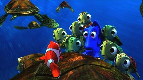 GUANGMANG Posters De Películas De Póster Buscando A Nemo: Sección 71 Rompecabezas Tabletas Adultos Juego Juguete Pzas Puzzle Impossible Departamento Decoracion Niño 1000 Pieza