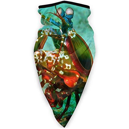 Double Cheese Winddichter Gesichtsschal für Männer Frauen, Mantis Shrimp Sun UV-Schutz Mehrzweck-Halsmanschette, Angeln Wandern Radfahren Staubgesichtsschal Bandana Sturmhaube Schwarz