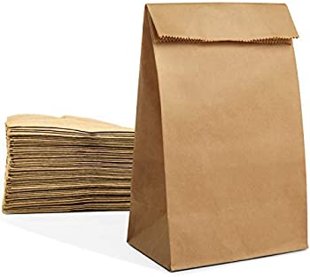 100 Large Paper Grocery Bags, 12x7x17 Kraft Brown Heavy Duty Sack for Recycling