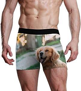 GOSMAO Fitted Boxer Bóxer Patrón de Perro Boxer Calzoncillos para Hombre,4,XL