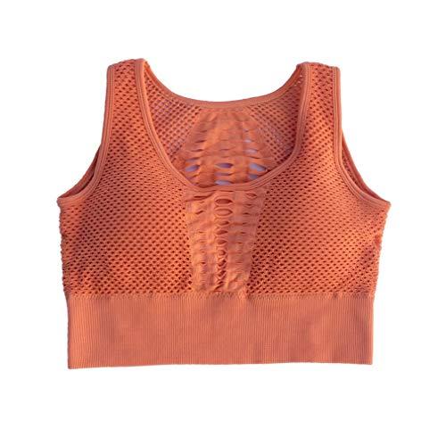 fawox Sujetador Deportivo Acolchado de Yoga para Mujer para Correr, Entrenamiento, Gimnasio, Malla, Chaleco Deportivo