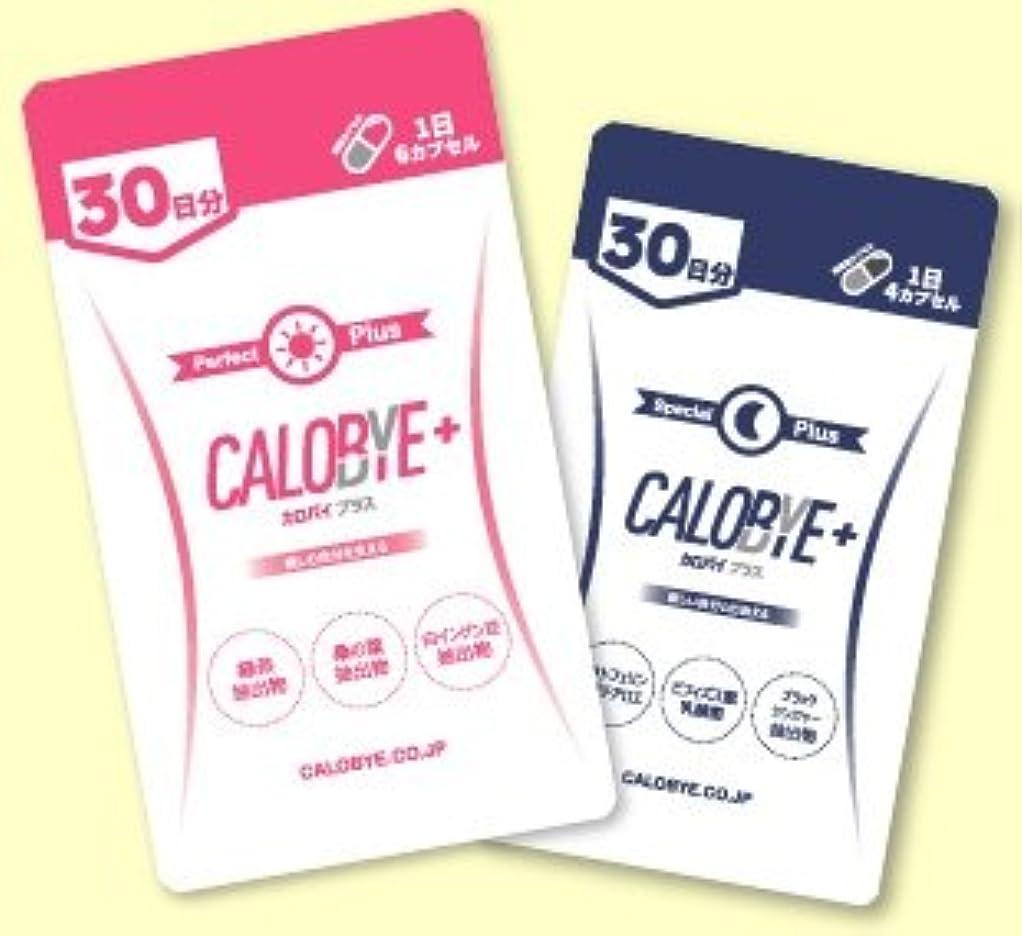 内向き進行中荒れ地?CALOBYE+ (カロバイプラス) CALOBYE SPECIAL+ (カロバイスペシャルプラス) 昼夜セット
