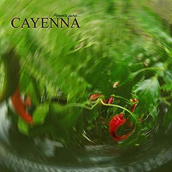 Cayenna 07 - Não Fala Muito (prod. Sandro Beatz)
