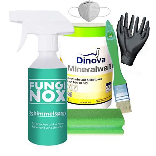 Schimmelpilz-Entferner Komplettset von FungiNox, [ Anti-Schimmel Spray, Mundschutz, Handschuhe, Schwamm, Anti-Schimmelfarbe weiß, Pinsel ] 100% Chlorfrei, gegen Schimmel & Stockflecken