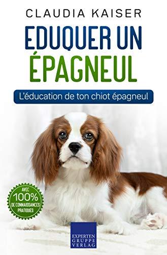 Eduquer un épagneul: L'éducation de ton chiot épagneul