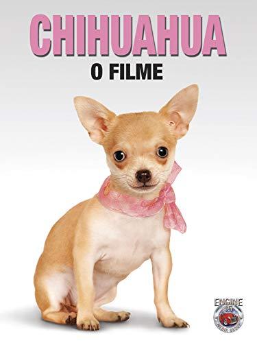 Chihuahua O Filme