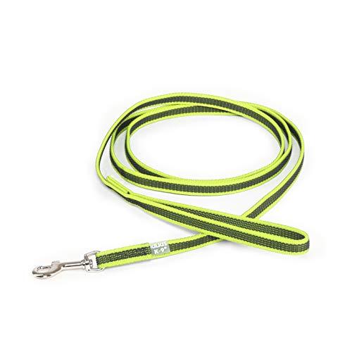 Julius-K9 Color & Gray Super-Grip Leash with Handle, 14 mm x 2 m, Neon-Gray, 87 g