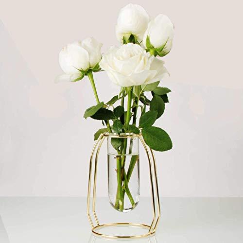YancLife Transparente Glasvasen für Tischdekoration, einfaches Reagenzglas mit Metallständer für Wohnzimmer, Balkon, Büro, Hochzeitsfeier und andere Blumenarrangements (Tyrann-Gold)