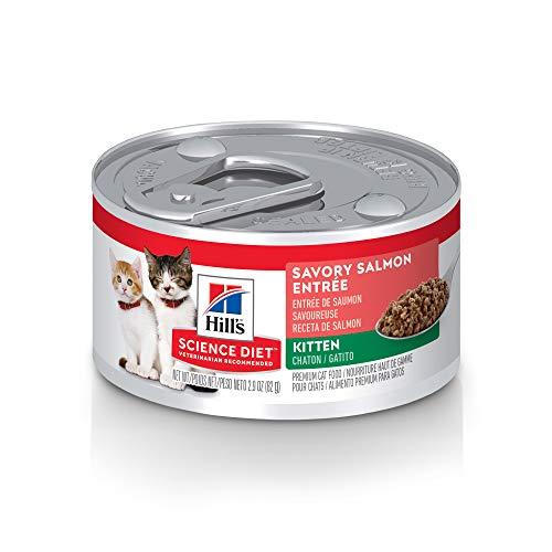 Hills Science Diet Wet Kitten Food