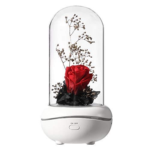 Rosa Eterna,Lampada per Aromaterapia con Rosa, Vetro Rosa Cupola Luce a LED Lampada Decorazioni Regalo per San Valentino, Festa Mamma, Decorazioni per la Casa (Rosso)