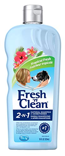 Fresh 'n Clean 2-in-1 Oatmeal Conditioning Shampoo, Tropical Scent, 18 oz.