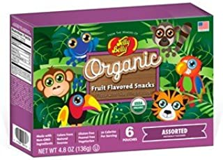 Organic Fruit Flavored Snacks - Rainforest Animals Assorted - 6 bags per box - 4.8 oz boxes