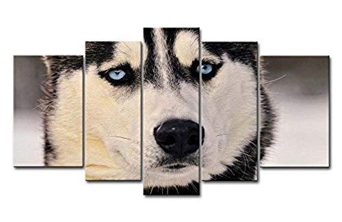 5 Piezas De Arte De La Pared Pintura Husky Siberiano Con Ojos...