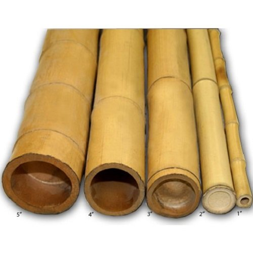 Forever Bamboo Bamboo Poles 2in D x 8ft L (10Pieces)