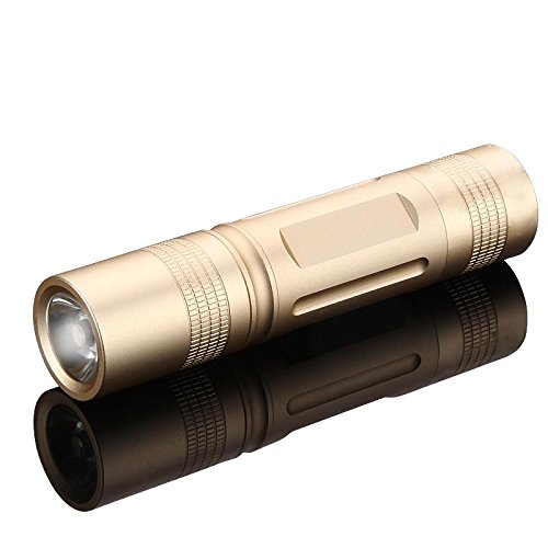 Zweibr/À1//4der/_ 8402 Lampe de poche LED LENSER/Â/®
