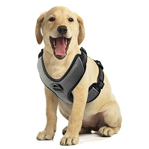 Zellar Hundegeschirr, Verstellbares, Atmungsaktives, Reflektierendes, Weich Gepolstertes Hundewestengeschirr Mit Griff Für Das Training Im Freien
