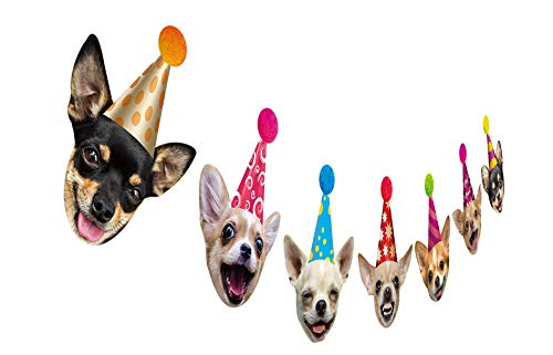 Chihuahua Dog Birthday Garland, Funny Chichi Portraits Party Decor, Dog Face Bunting Banner