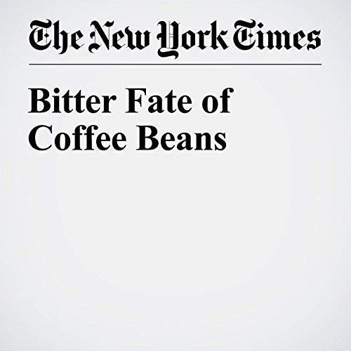 Bitter Fate of Coffee Beans copertina