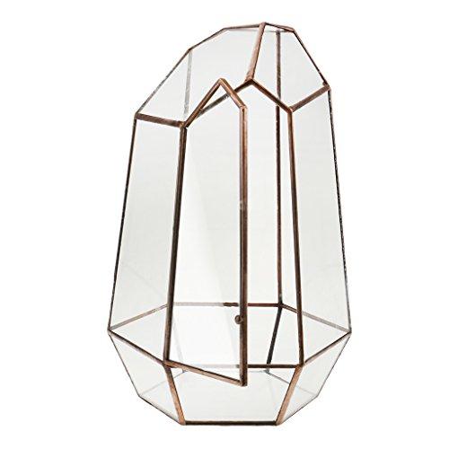 Irreguläre Mini Glas Terrarium Geometrisches Glas Sukkulente Pflanzen Pflanzgefäß Deko - 16 x 16 x 25cm