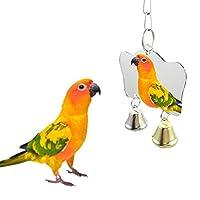 ペットのおもちゃミラー楽しい玩具についてはオカメインコオウム小鳥のオウムのおもちゃペットのオウムのクライムアクセサリー (Color : G)
