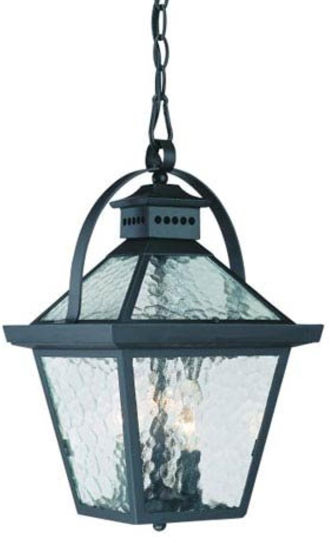 Acclaim 7676BK Bay Street Collection 3-Light Outdoor Light Fixture Hanging Lantern, Matte Black