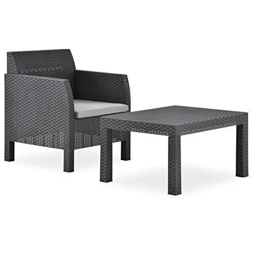 Tidyard Conjunto de sofás Set de Muebles jardín 2 Piezas con cojín PP Gris Antracita