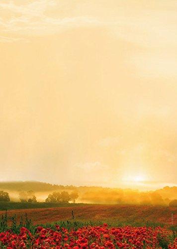 Natur Designpapier Motivpapier Goldener Herbst, 20 Blatt Briefpapier DIN A4, 90g/qm