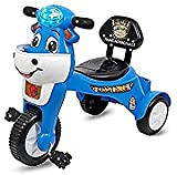 M H Collection Happy Birthday Baby Tricycle Ride-On with Music & Light