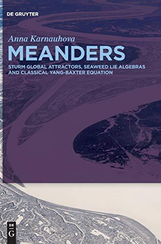Meanders: Sturm Global Attractors, Seaweed Lie Algebras and Classical Yang-Baxter Equation