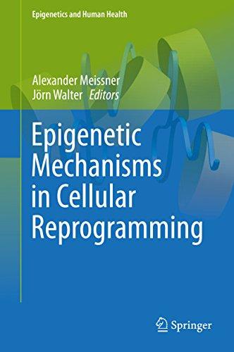 Epigenetic Mechanisms in Cellular Reprogramming (Epigenetics and Human Health)
