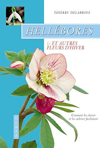 Hellébores et autres fleurs d'hiver