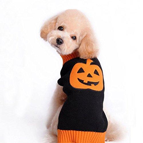 JJ Store gebreide trui voor huisdieren, pompoendesign, voor kleine en middelgrote honden, medium, Blanco Y Gris