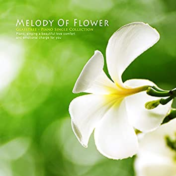 Melody Of Flower