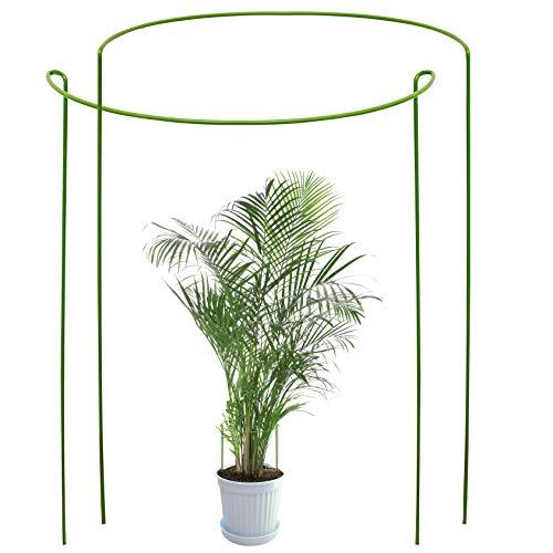 Odoxia 2-er Pack Staudenhalter rund | Pflanzenstütze rund für große Pflanzen und Blumen | Grüner Stützkäfig | Für Pflanzen-Wachstum | Pflanzenstangen für Hortensien, Pfingstrosen, Tomaten, Garten usw