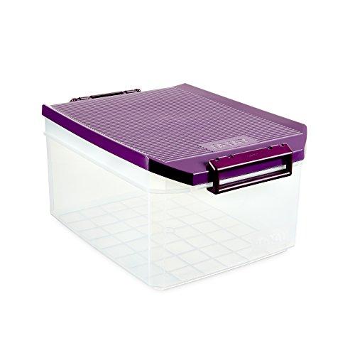TATAY 1150120 - Caja de Almacenamiento Multiusos con Tapa, 14 l de Capacidad, Plástico Polipropileno Libre de BPA, Morado, 27 x 39 x 19 cm