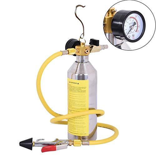 AC Flush Kit, Car Air Conditioner System Clean Canister Flushing Gun Tool Set for Auto R134 R12 R22 R410 R404